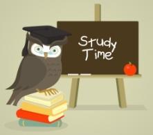 homework_owl