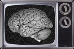 brain_tv